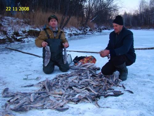Подледная рыбалка на енисее