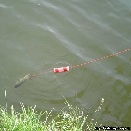 Донная снасть с подводным поплавком