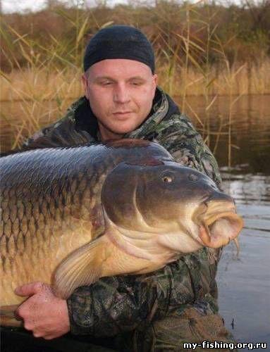 рыбаки с большими рыбами