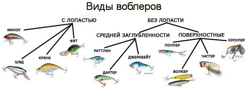 какие виды ловли существуют
